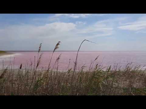 """Siwaschsee - Bucht des Asowschen Meeres - """"Totes Meer"""" der Ukraine und der Krim"""