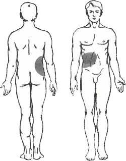 Behandlung von Gallenblase- und Gallengang-Erkrankungen mit Sivash-Heilschlamm